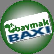 Mimaroba,baxi,servisi